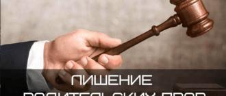 11 2 330x140 - Основания для лишения родительских прав отца ребенка