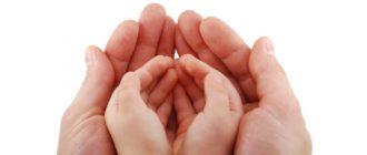 14 2 330x140 - Опека и попечительство над детьми